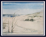 Summer Beach an 11x14 beach painting